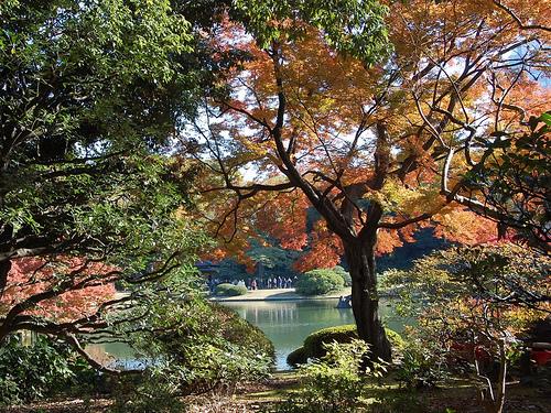 natsume soseki the gate