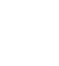 Metropolis Bleu